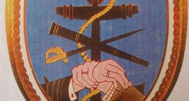 MTN_(emblem)