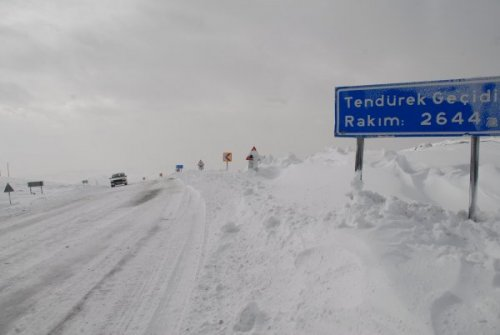 tendürek-mountain